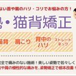 nbanner_shisei
